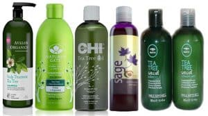 Best shampoos for an itchy scalp