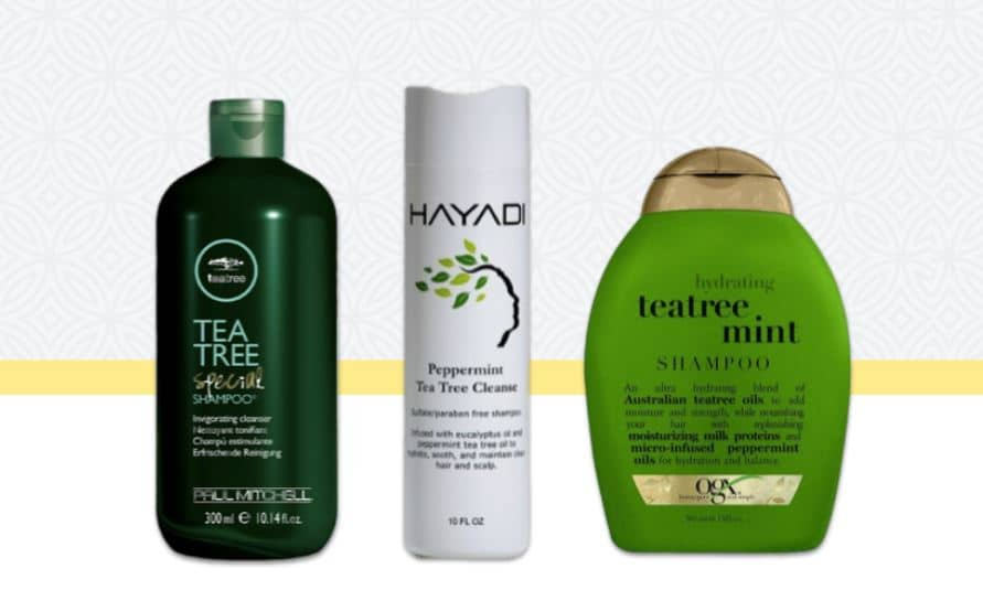 Best shampoos for an itchy scalp with dandruff - Try tea tree shampoos